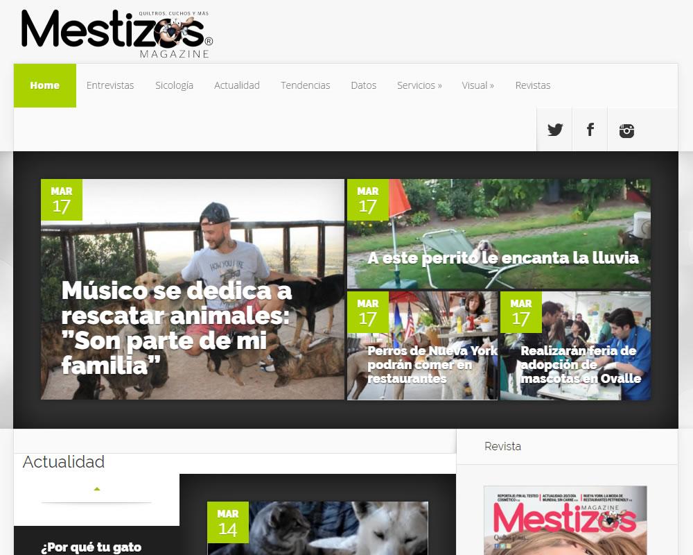 Mestizos Magazine