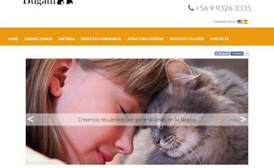 Sitio WEB ArteBugatti